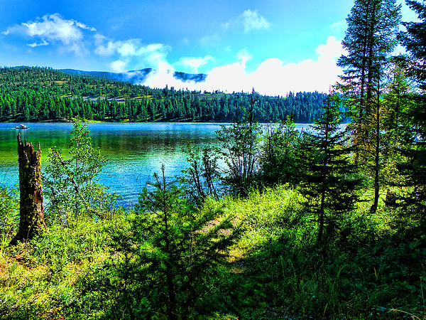 Ryan Seek - Morning on the Lake