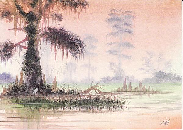 Jon Haber - Morning Swamp