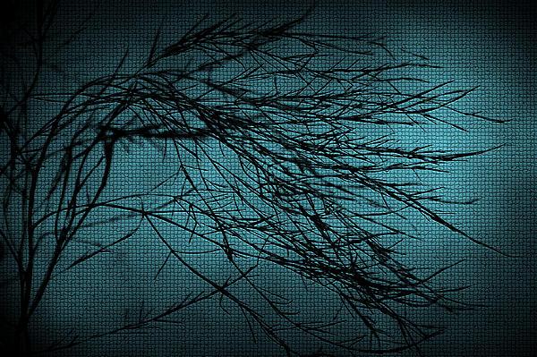 Svetlana Sewell - Mosaic Branch