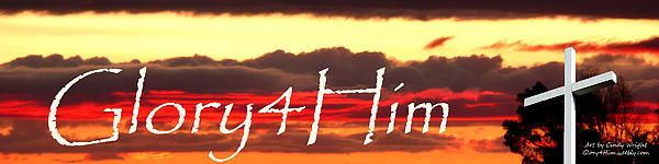 Cindy Wright - My Logo