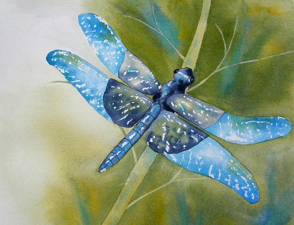 Carol Bruno - Natures Sparkles