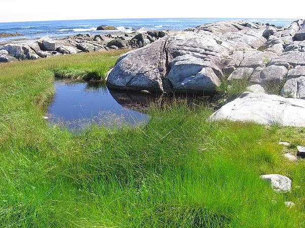 Karen Molenaar Terrell - Nova Scotia Beach