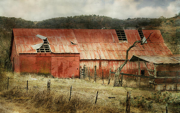 Joan Bertucci - Old Red Barn