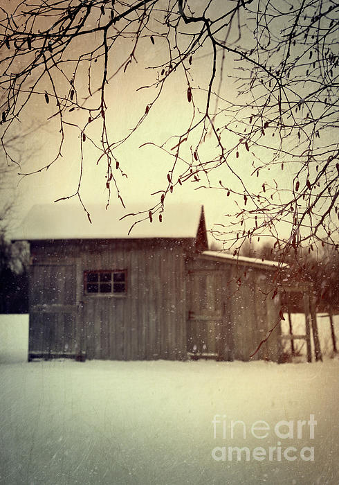 Sandra Cunningham - Old shed in wintertime