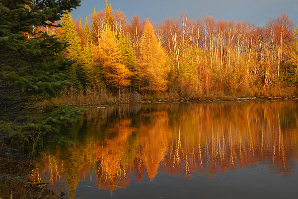 Heather Hinam - On Golden Pond