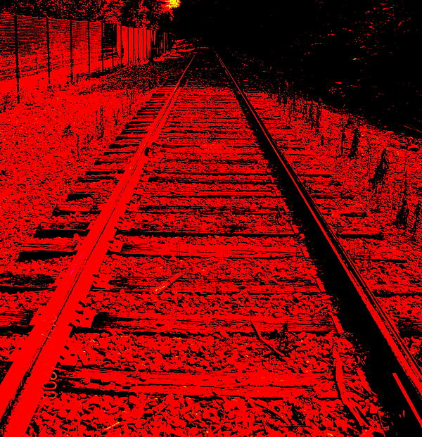 Debra  Barrington - On the Right Track
