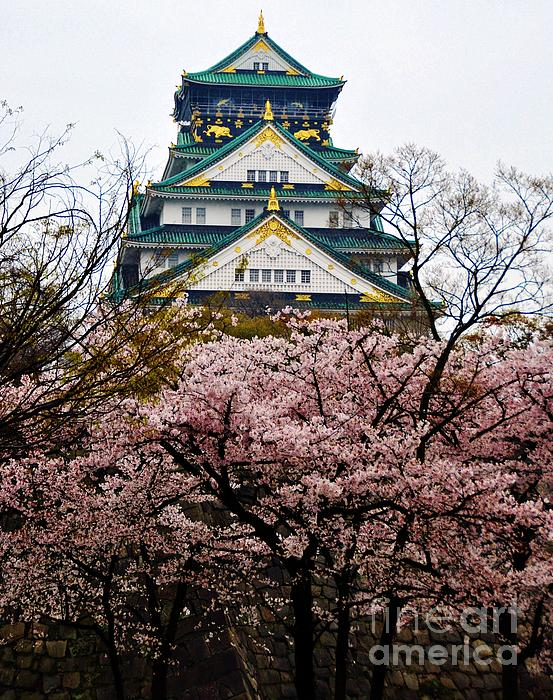 Connor Duffy - Osaka Castle