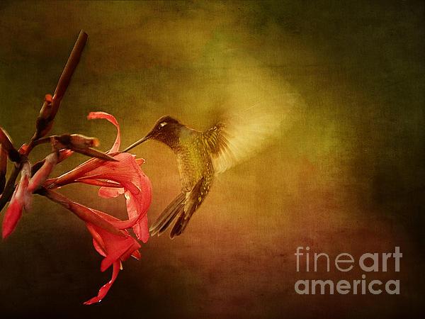Anne Rodkin - Painterly Hummingbird #2