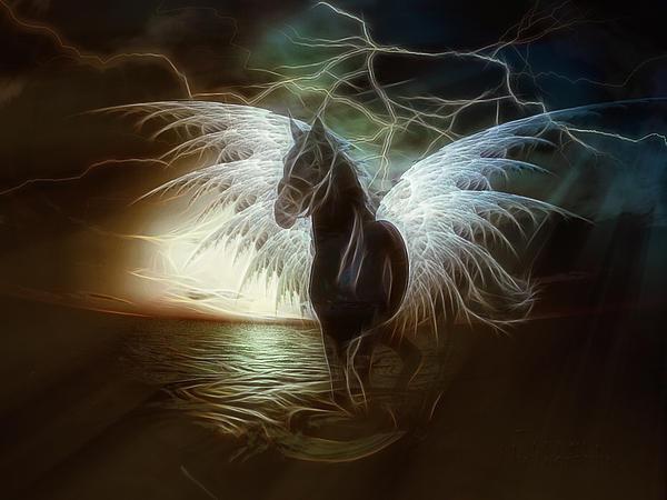 Tonny Ernawan - Pegasus