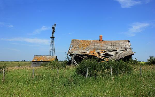 Jim Sauchyn - Prairie Dream