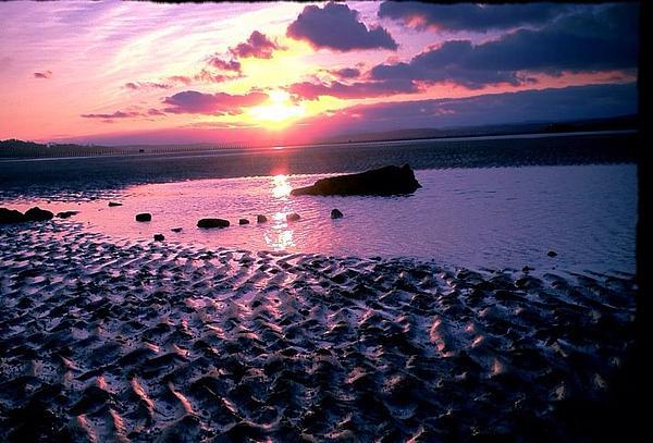 Jenn Lamond - Purple sunset by the beach