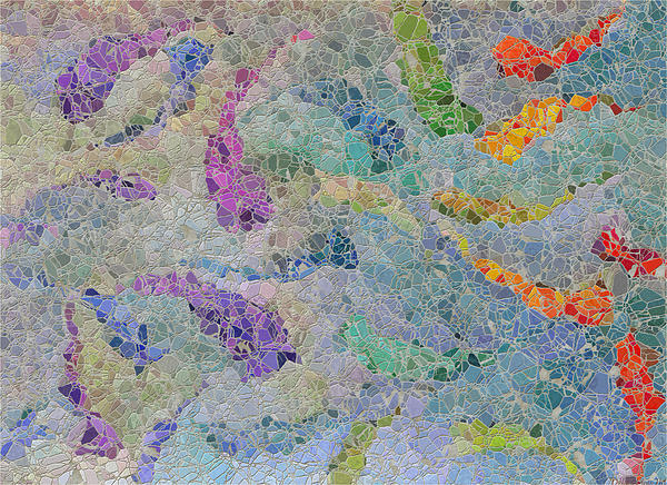 Debbie Portwood - Rainbow fish Mosaic Tile abstract