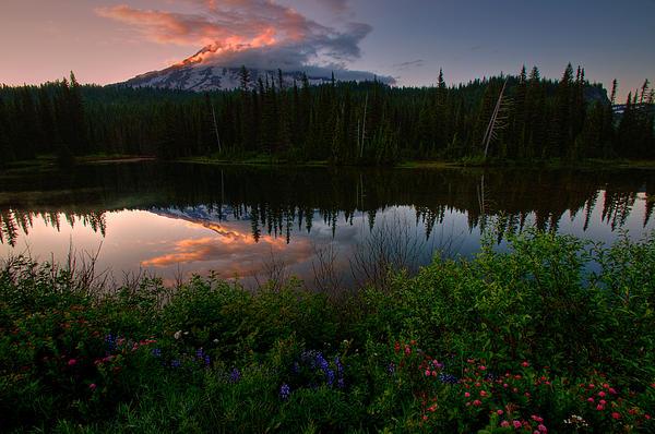 Dan Mihai - Reflection Lake Wildflowers