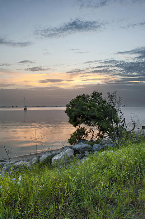 Cheryl Davis - River Sunset