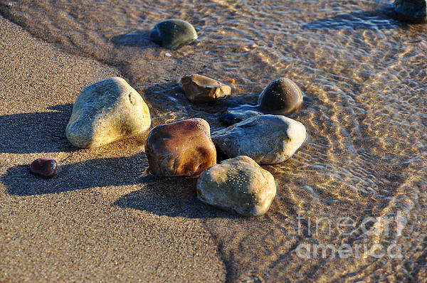 Ginger Harris - Rocky Beach