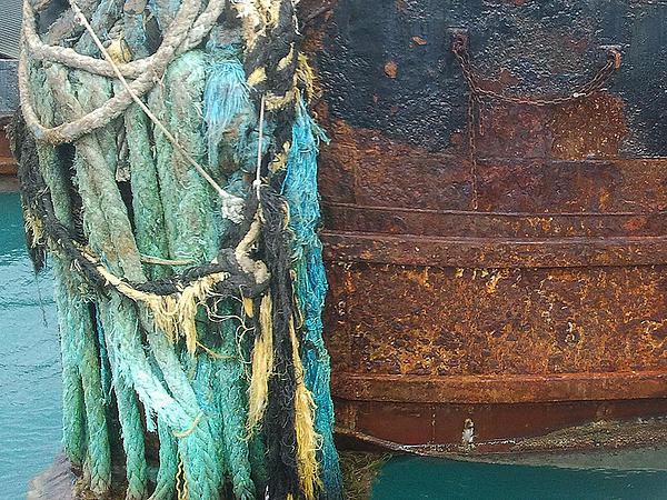 Steve Sperry - Rusting Away in Margarita-Ville