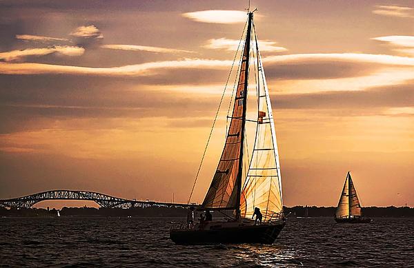 Cheryl Cencich - Sailing At Sunset