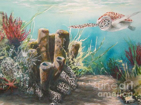Steve Aho - Sea Turtle