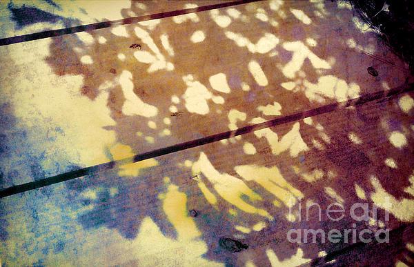 Judi Bagwell - Shadows on the Bench