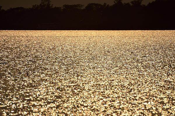 Fotosas Photography - Shimmering Waters at Sunset