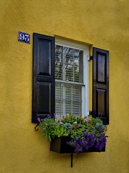 Sandra Anderson - Shutters and Window Boxes
