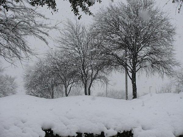 Shawn Hughes - Silence of the Snowfall
