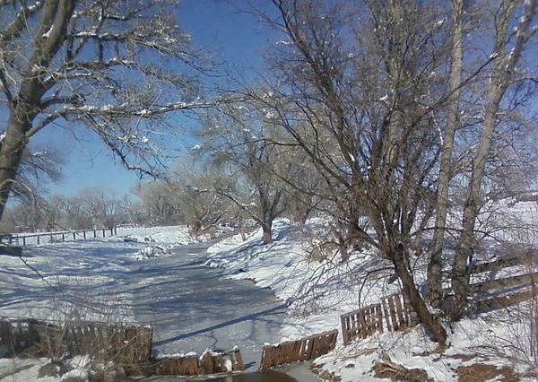 Peri Craig - Silver Creek