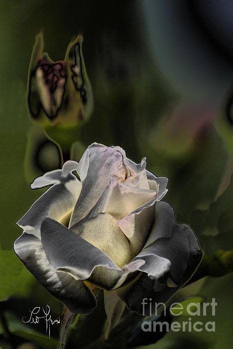 Leo Symon - Sinful Rose
