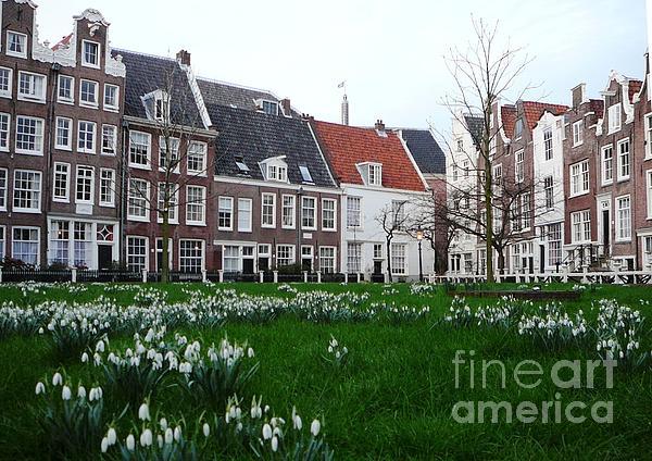 AmaS Art - Spring in Amsterdam