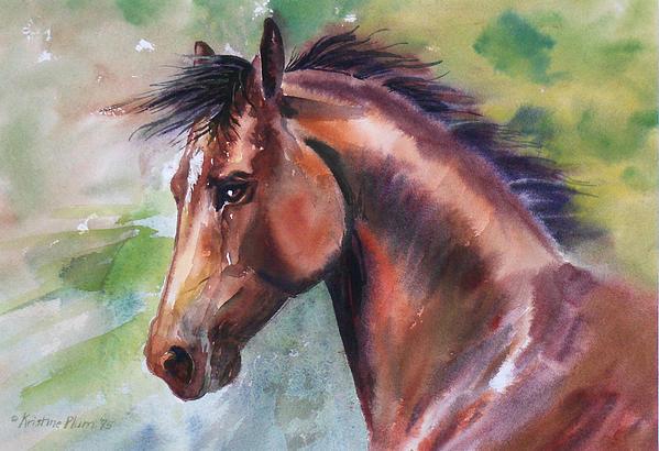 Kristine Plum - Star Stallion