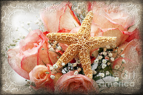 Andee Design - Starfish And Pink Roses