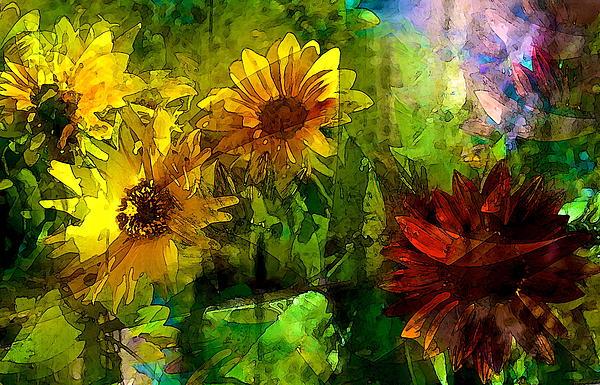 Pamela Cooper - Sunflower 4