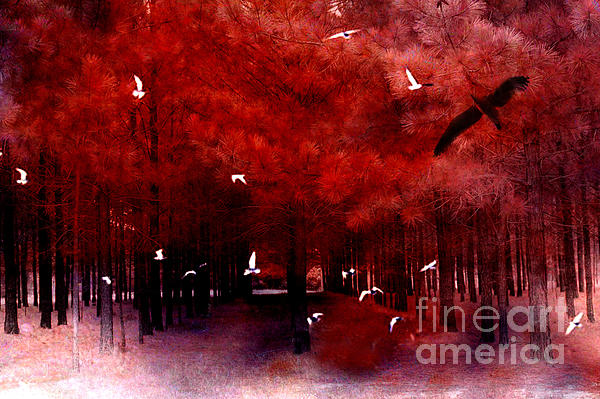 Kathy Fornal - Surreal Fantasy Red Woodlands With Birds Seagull
