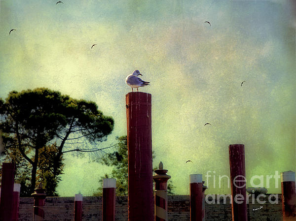 Madeline Ellis - The Birds