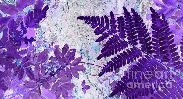 Art Studio - The Passion Of Purple