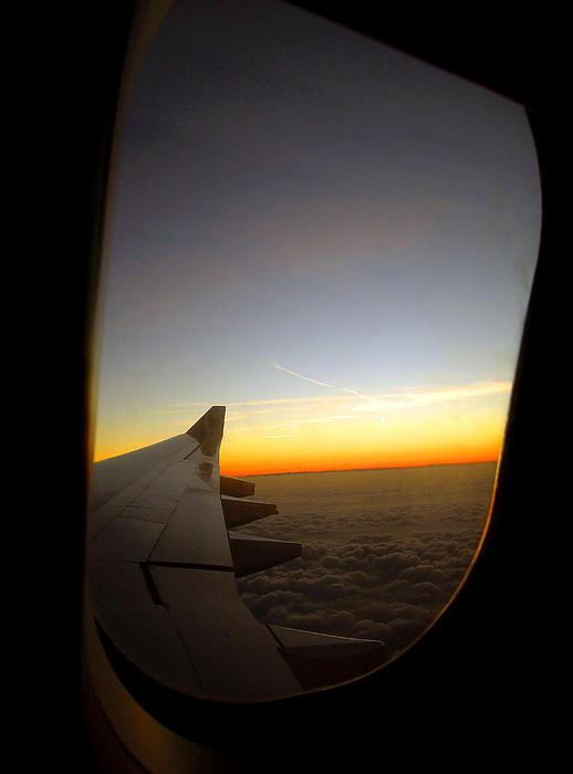 Farah Faizal - The Plane Window