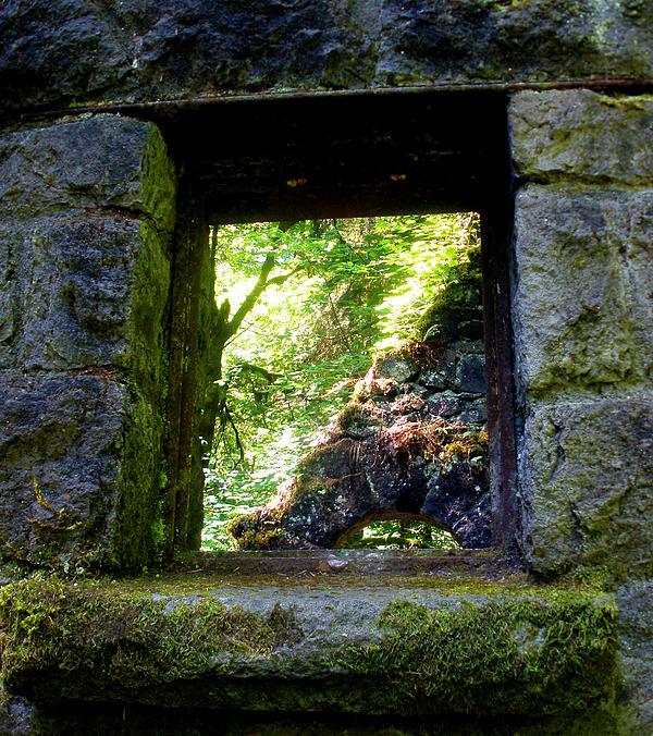 Cija Black - The Witches Window
