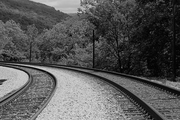 Rachel Cohen - Tracks Doubled