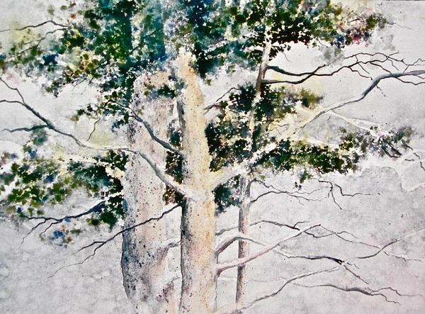 Carolyn Rosenberger - Trees in the Mist