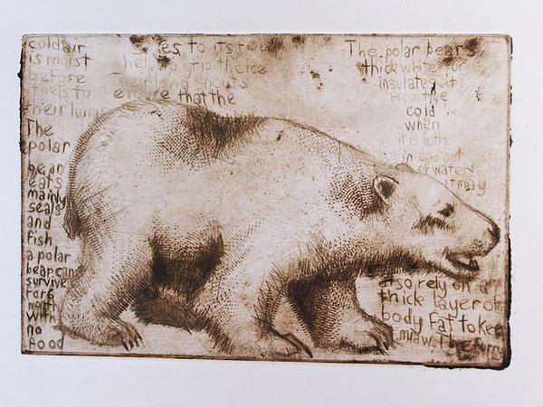 Hannah Haworth - Ursulus Maritimus