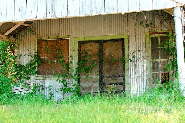 Connie Fox - Vintage Gas Station in Springtime