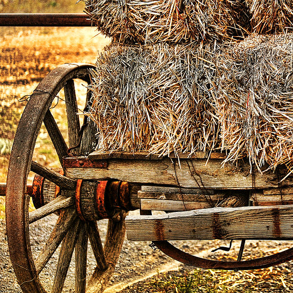 Bonnie Bruno - Vintage Hay Wagon