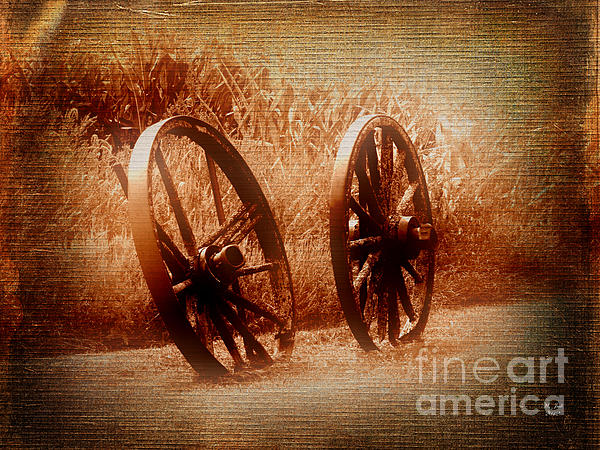 Ms Judi - Wagon Wheels