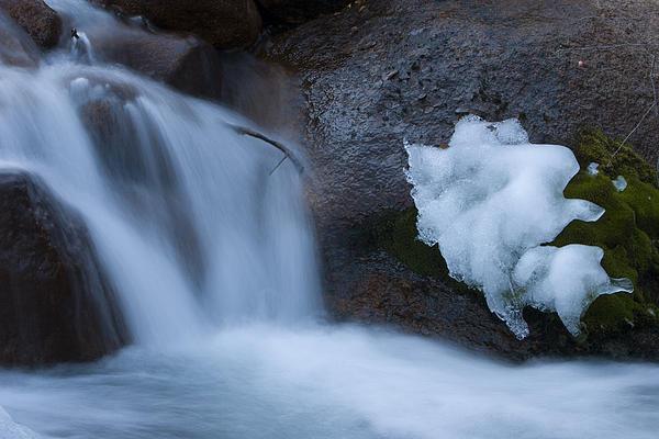 Maureen Bates - Water and Ice