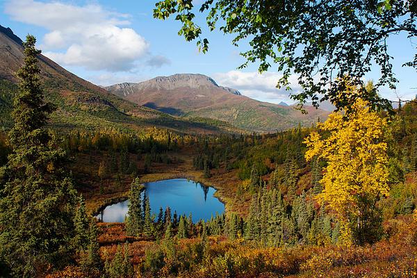 Ron Day - Wilderness Pond Alaska