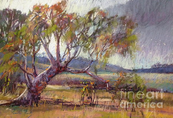 Pamela Pretty - Winter Redgum
