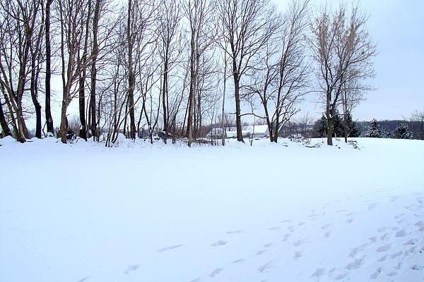 Jose Lopez - Winter Scenery