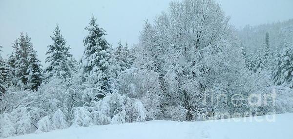 Art Studio - Winter Wonderland