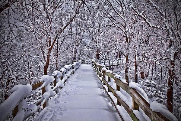 Jeff Swanson - Winter