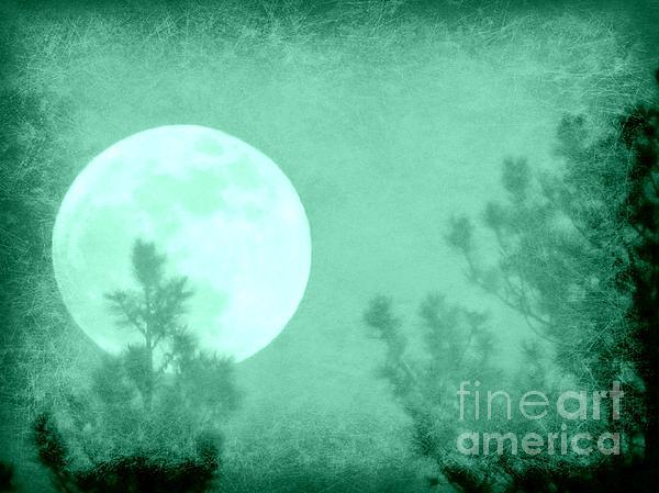 Barbara Henry - Wyoming Moon